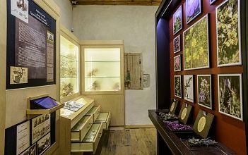 Rodanthi Museum