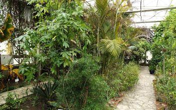 Botanic Garden Stavroupolis