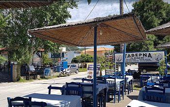 Taverna Leon