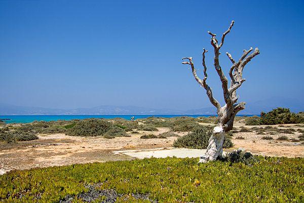 Остров Хриси (Крит): как добраться самостоятельно